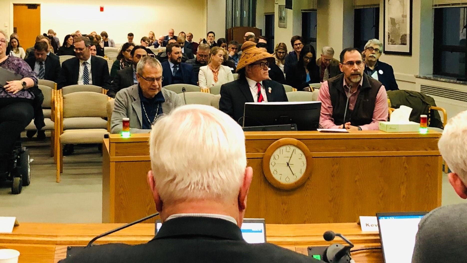 Three people testifying in a Senate Committee hearing.