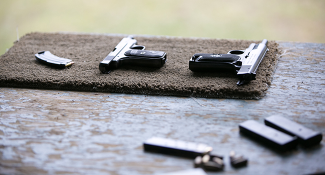 hand guns with magazines