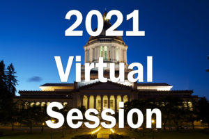 2021 Virtual Session